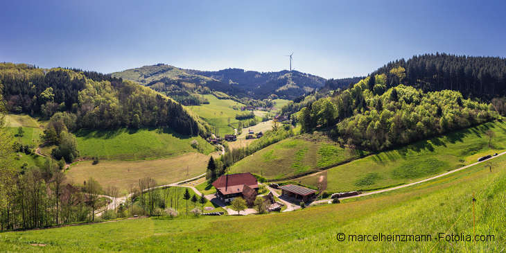Grüne Hügellandschaft teils mit Tannenwäldern bewachsen. Im Vordergrund ein kleiner Hof. Am Horizont ein Windrad.